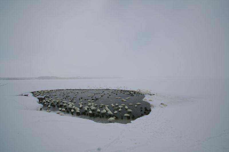 Lake Kuccharo