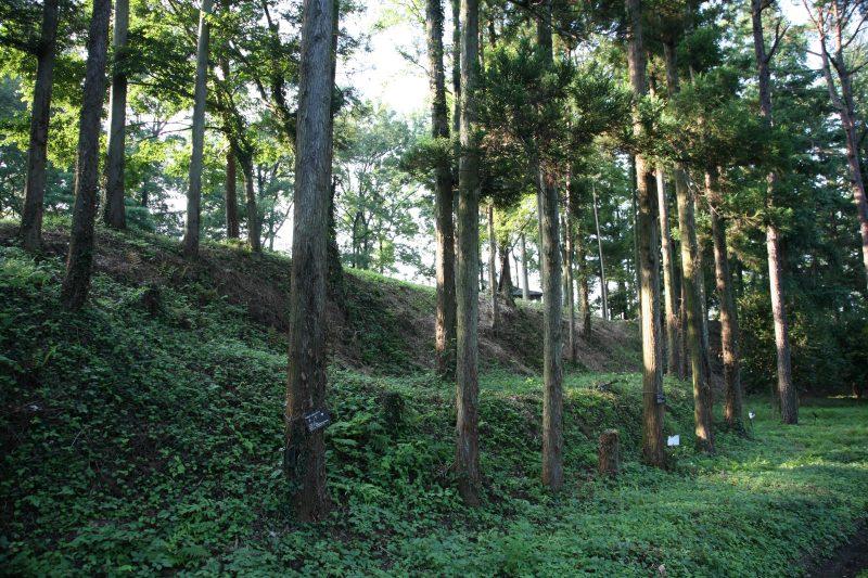 Hachigata Castle ruin