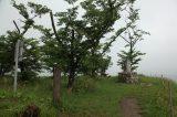 Iwaya castle