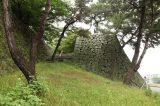 Kurume castle