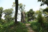 Matsuyama castle ruin