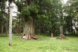 Nobesawa castle ruin