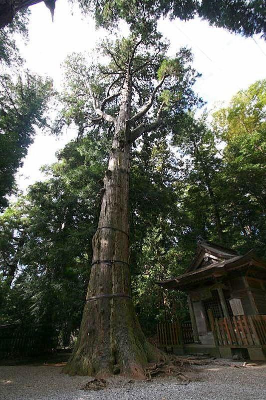 Takachiho jinja shrine