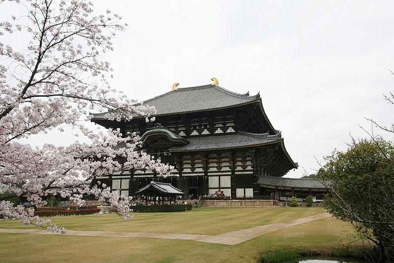 Todaiji temple in Nara