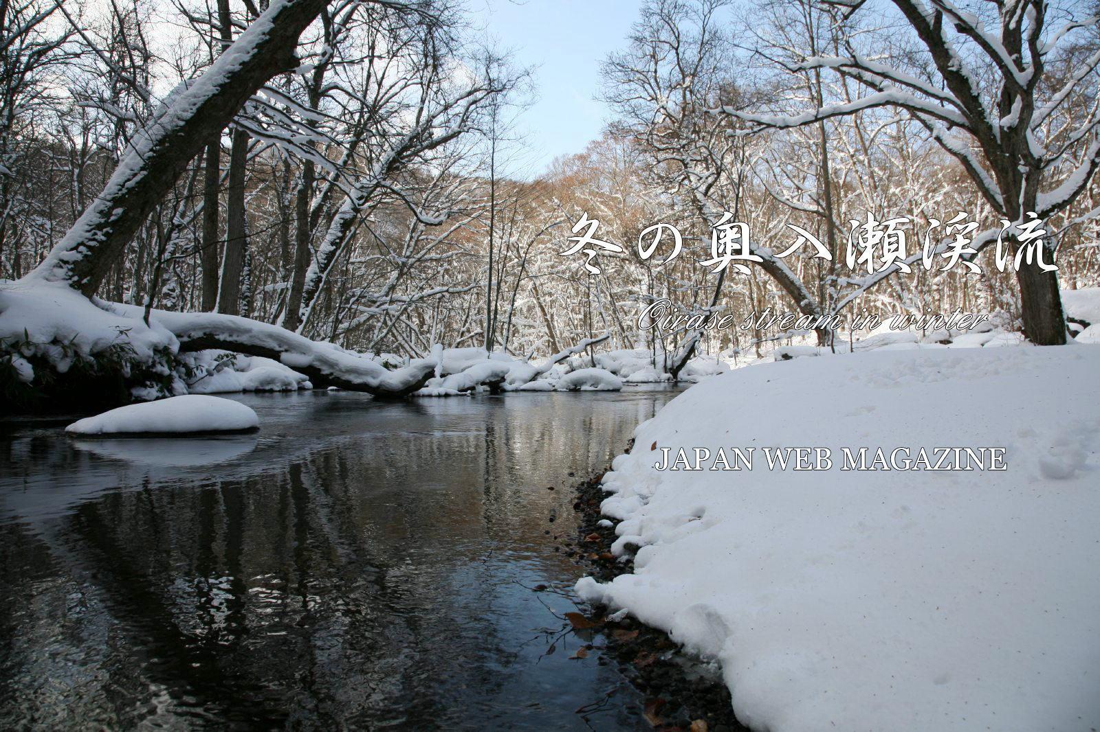 Oirase stream in winter