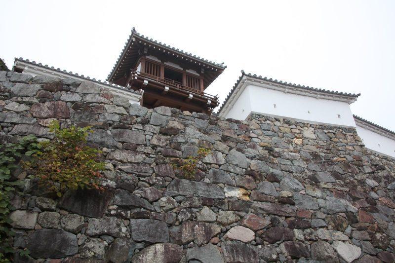 Fukuchiyama Japan  city photo : Fukuchiyama castle | JAPAN WEB MAGAZINE