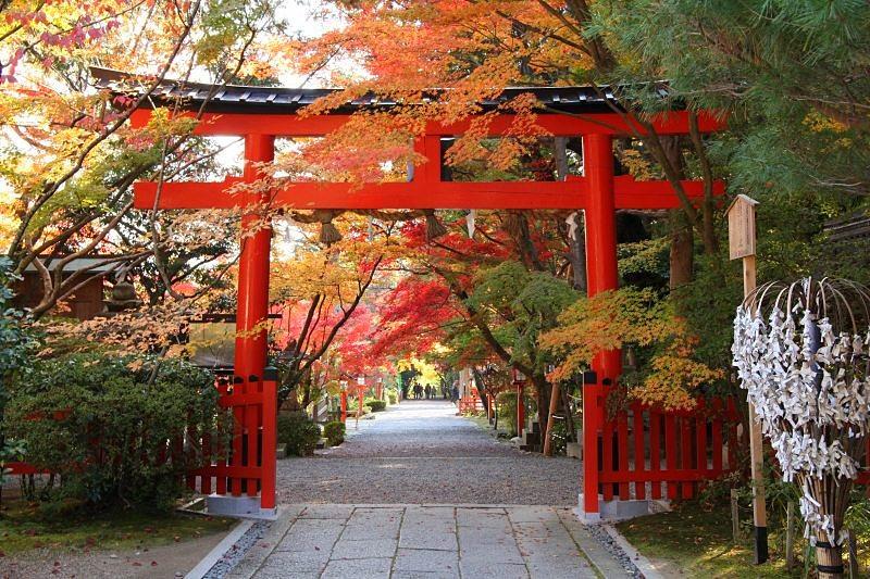 <b>大原野神社</b>