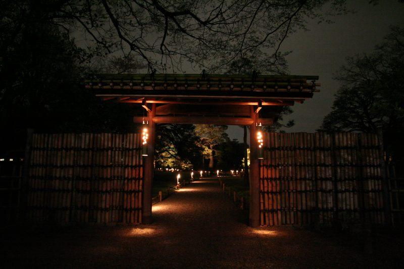 Japanese Garden At Night in japan