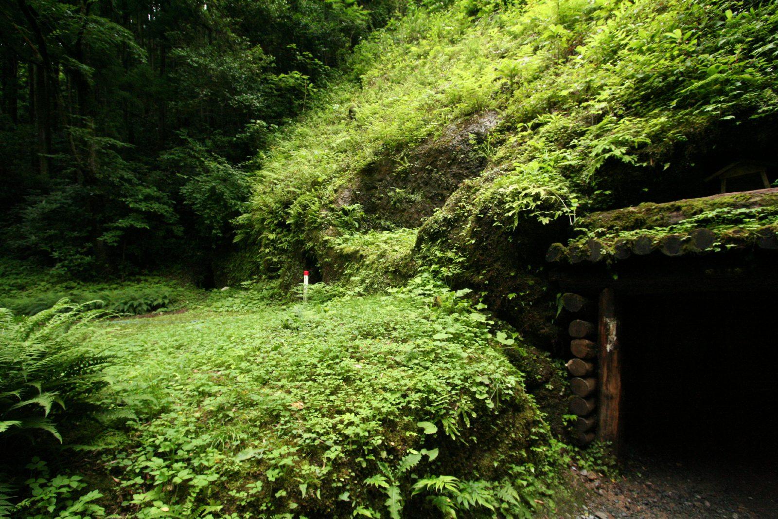 石見銀山の画像 p1_35