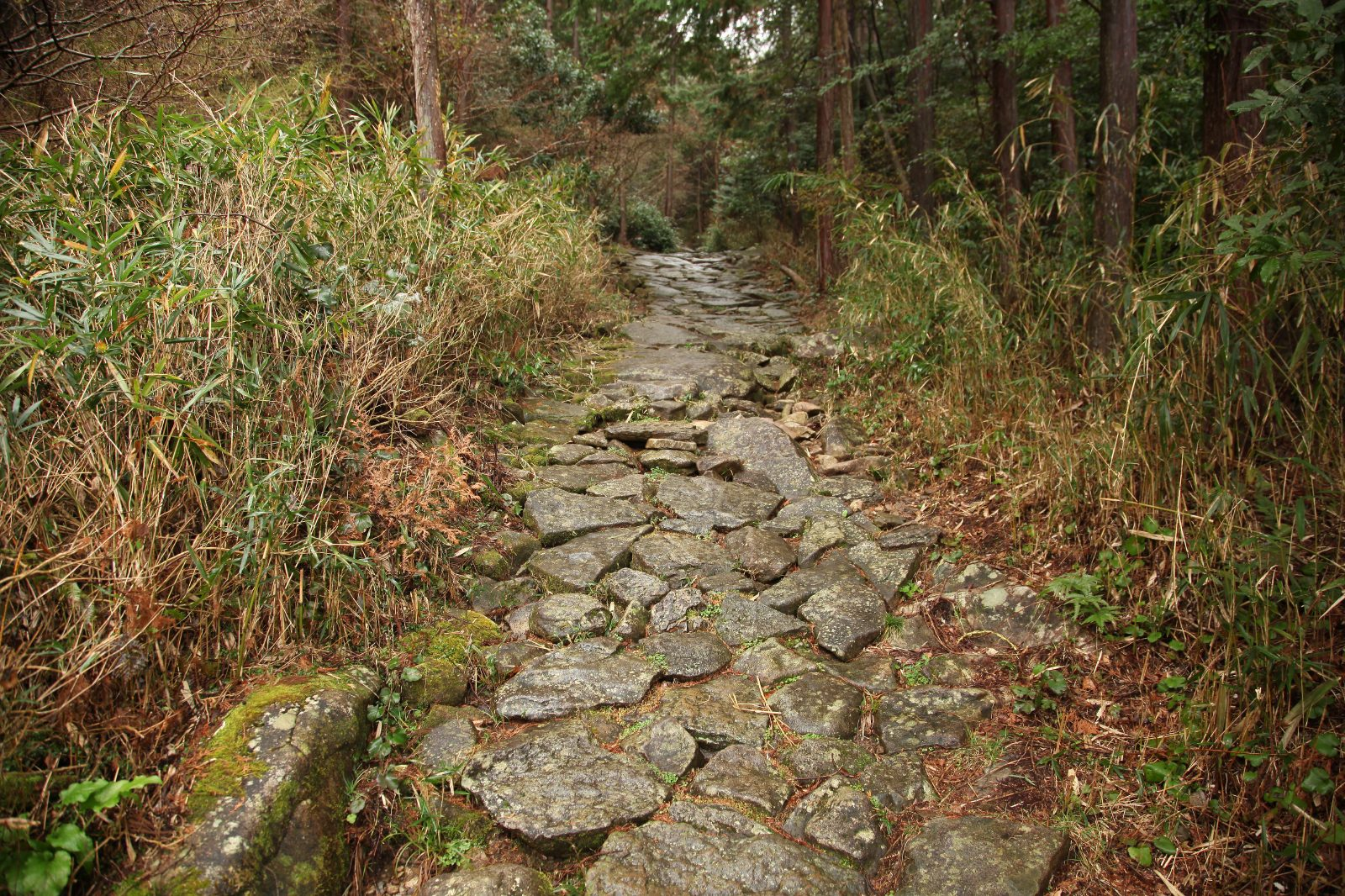 Kumano Kodo (Iseji)