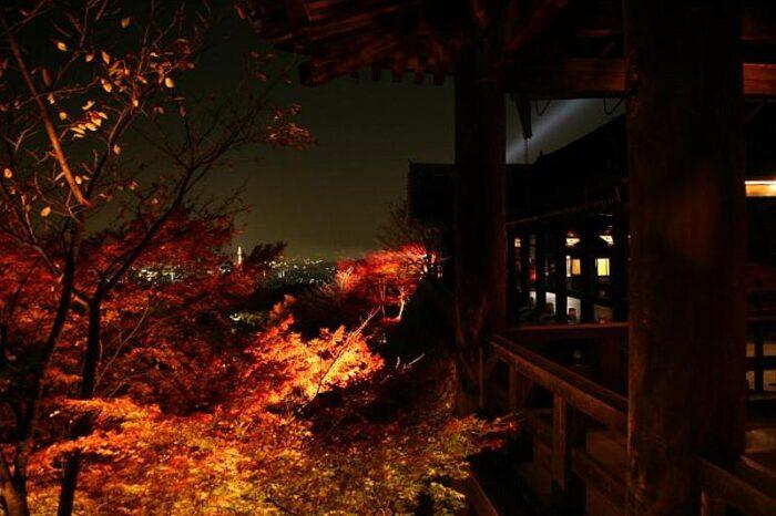 夜の清水寺の紅葉