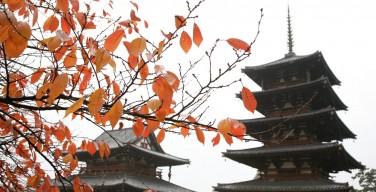 秋の法隆寺