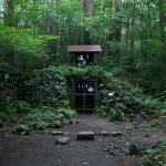 吉田胎内樹型