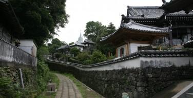 寺院と教会が見える風景