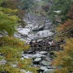 かずら橋と周辺の写真