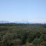 新座市役所から見る富士山 関東の富士見百景