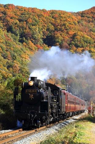 蒸気機関車で錦秋の秩父路へ