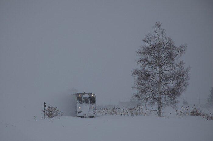 雪の中から現れる富良野線