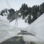 新潟県十日町市松之山藤倉 雪の壁