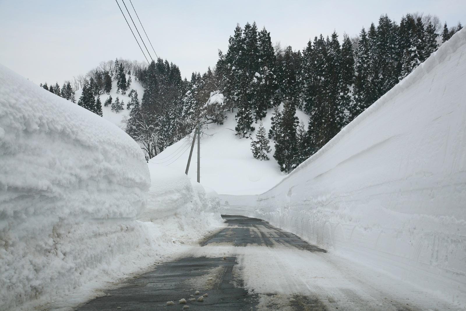 新潟県十日町市松之山藤倉 雪 ...
