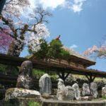 伊那市高遠町の春の風景