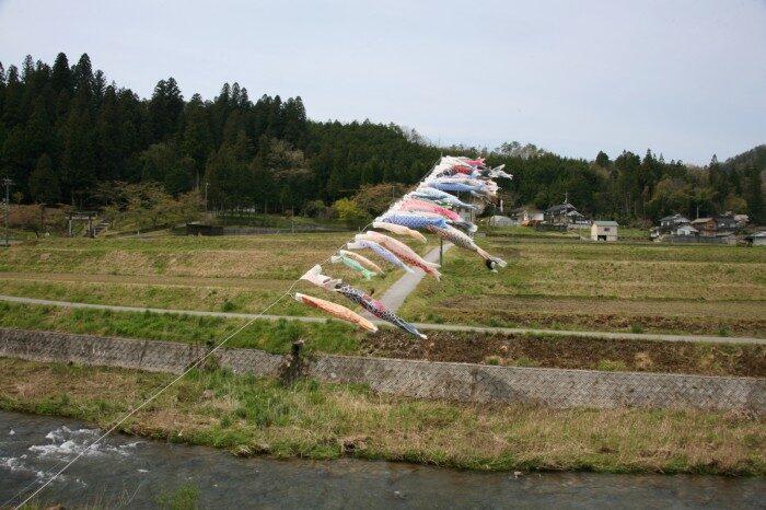 鯉のぼり 岡山県新見市