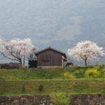 福岡県田川郡香春町の風景