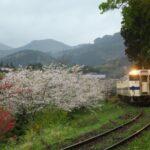 桜と日南線