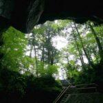 富岳風穴からみる世界