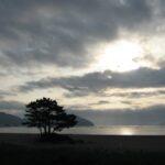 朝の三陸の風景