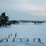 冬の徳良湖