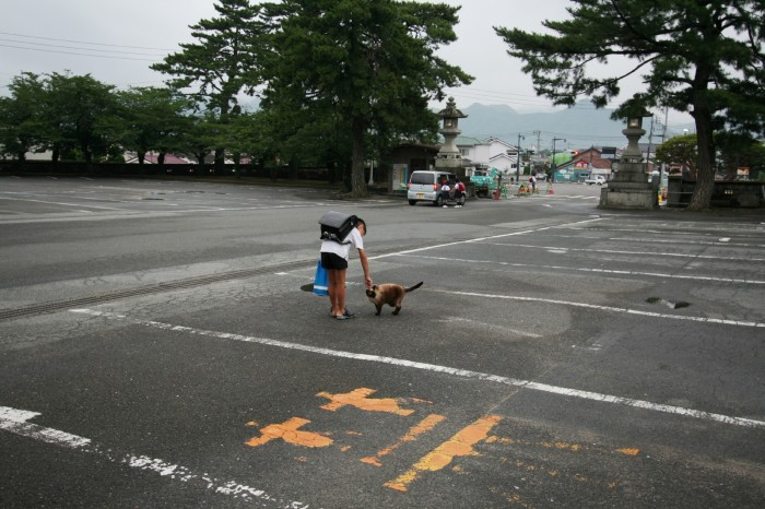 松陰神社 子供と猫