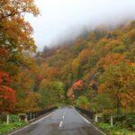 秋田県仙北市 国道341号線 紅葉の山々