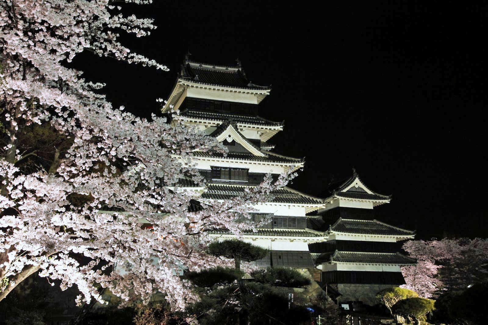 夜桜と松本城