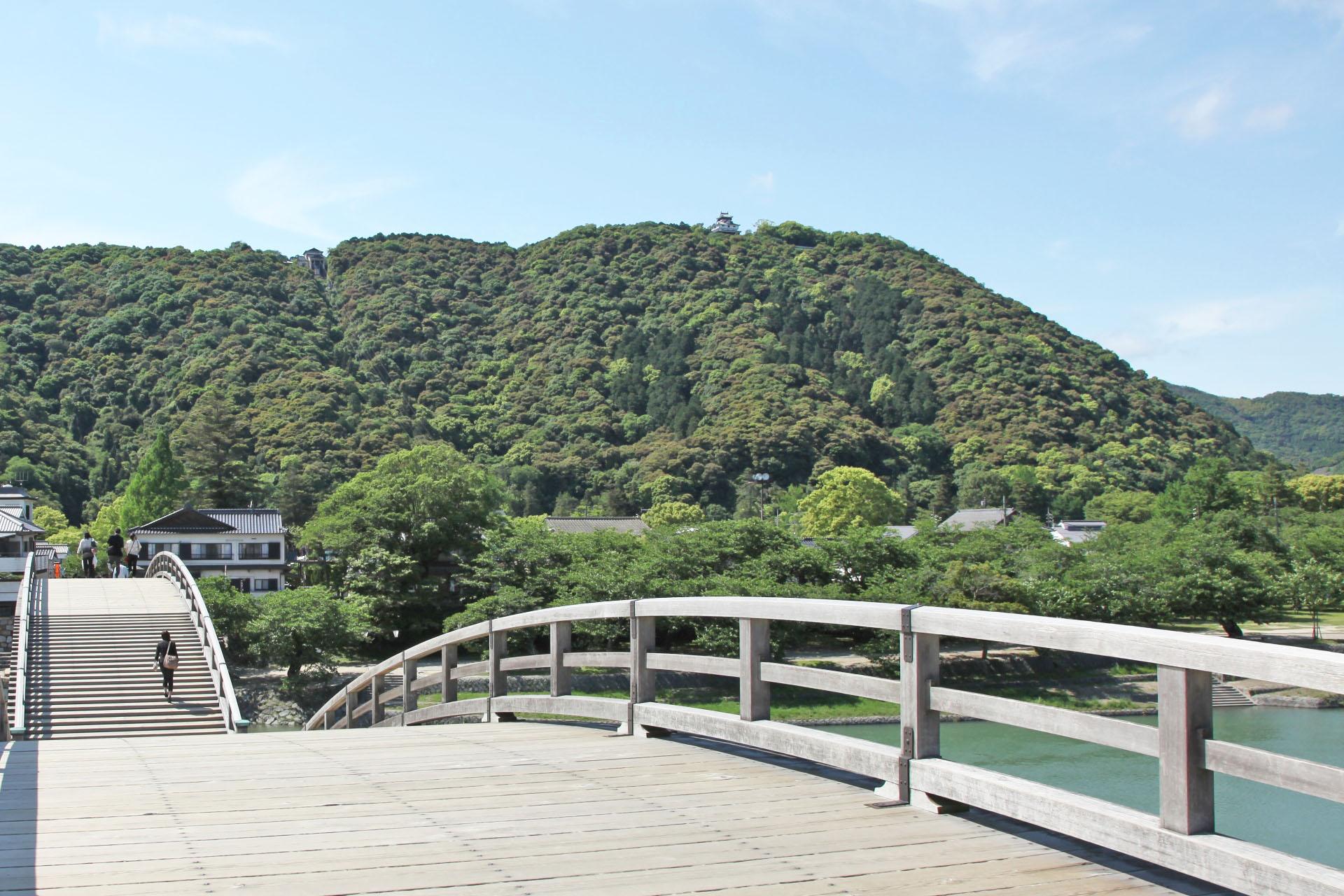 錦帯橋から見る岩国城(真ん中よりやや右寄りの位置)