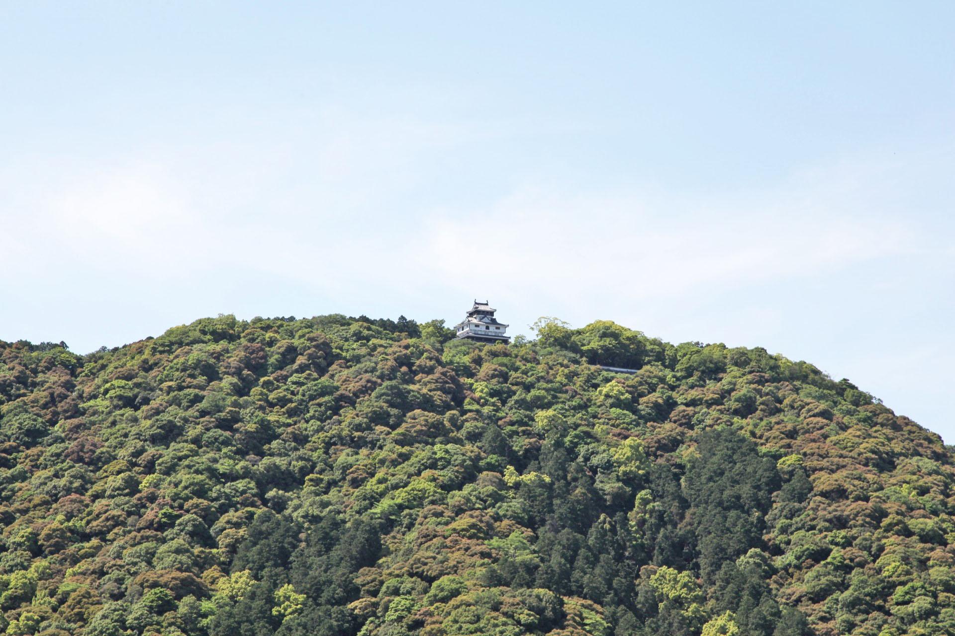 錦帯橋から見る岩国城(クローズアップ)