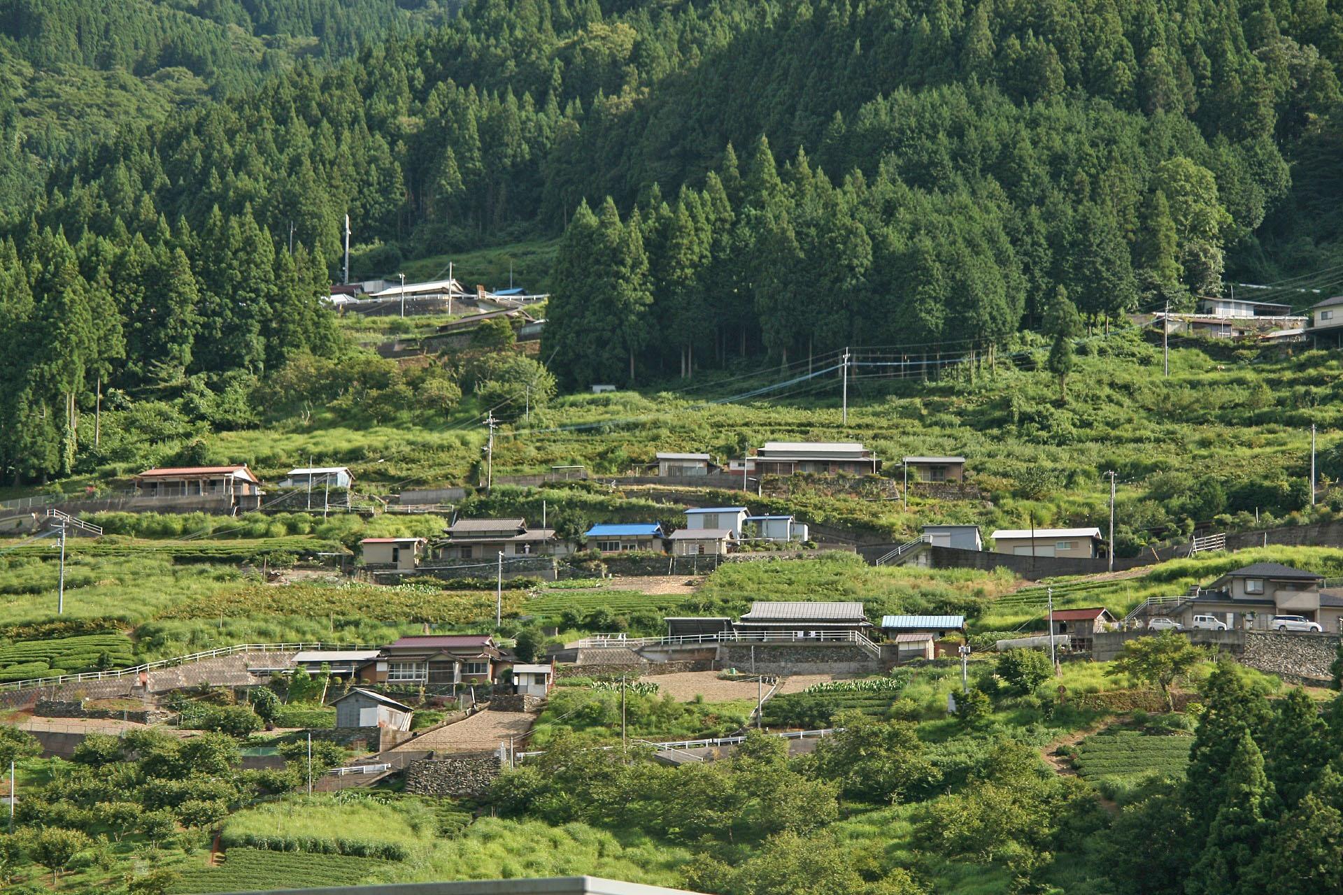 祖谷の風景
