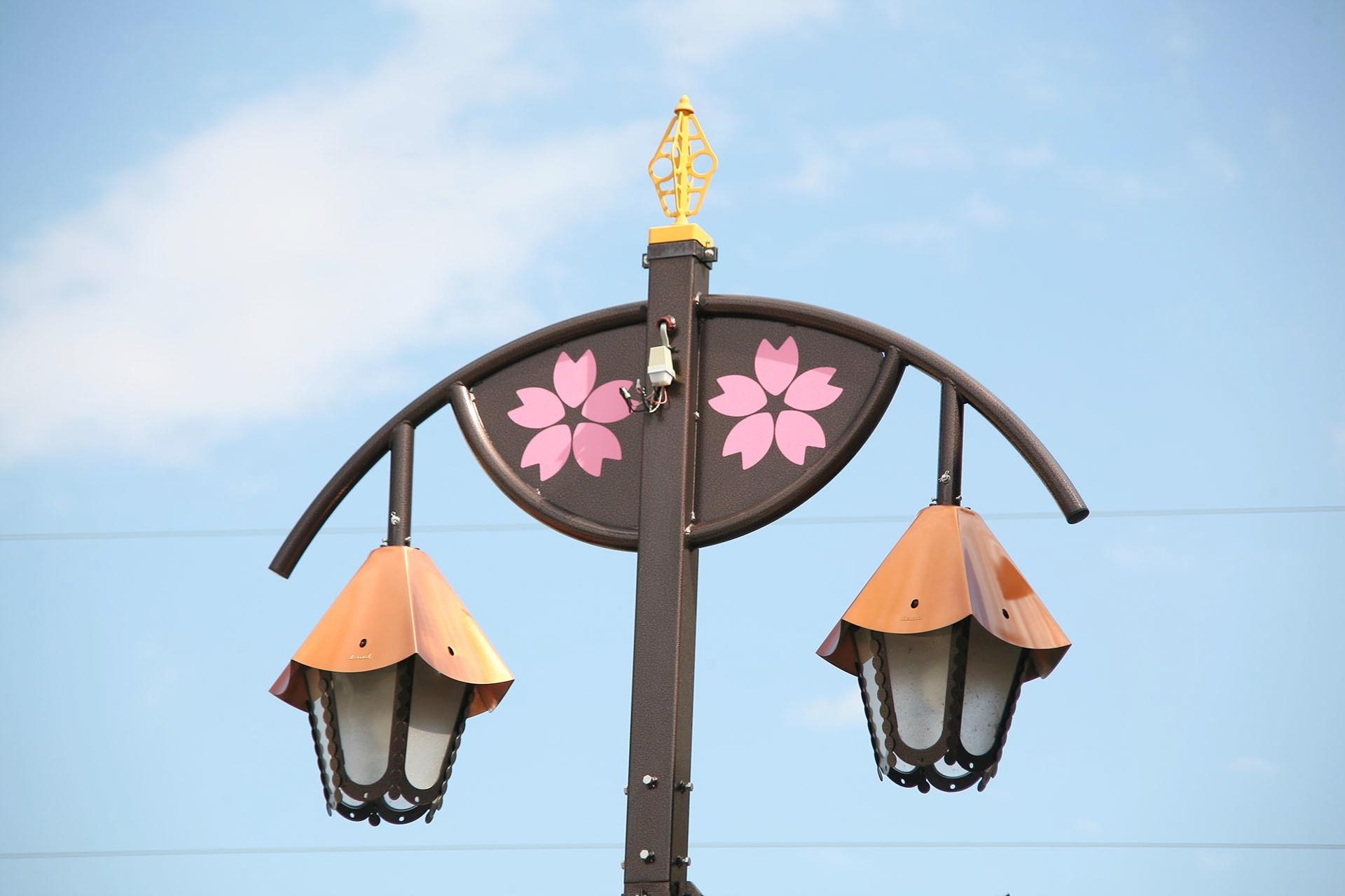 幸手の町中では至る所に桜が溢れます