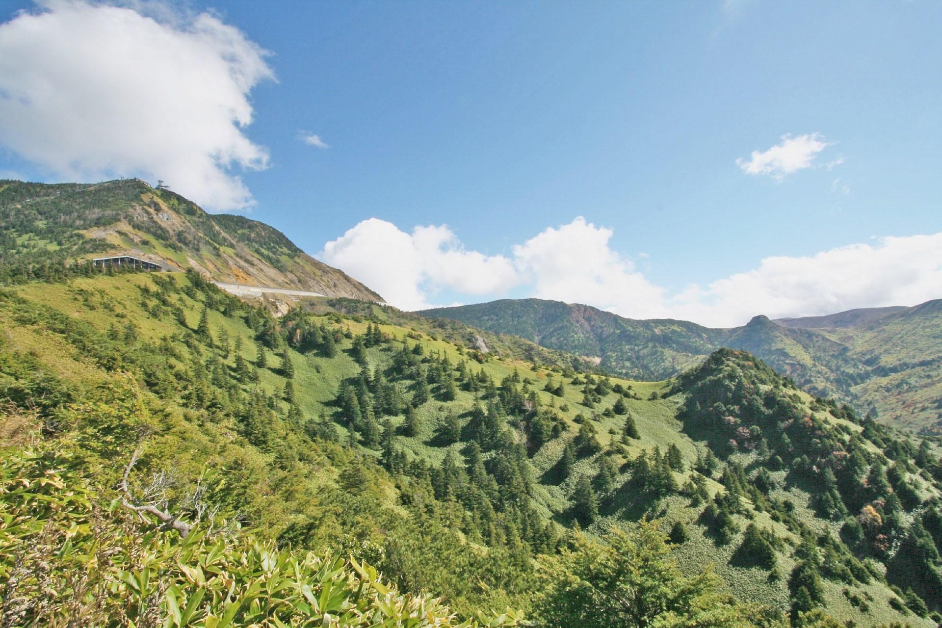 夏の志賀高原