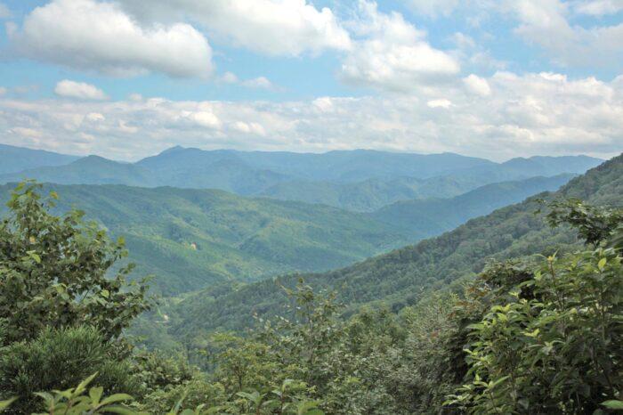世界遺産 白神山地の風景