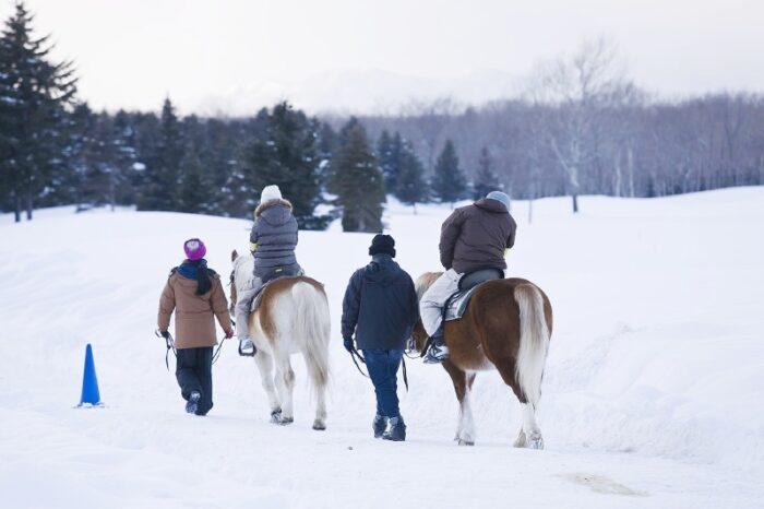 雪上乗馬体験
