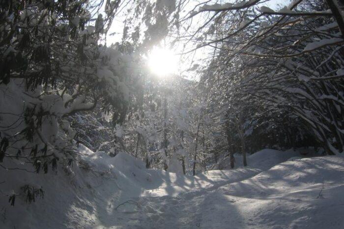 日本各地の冬の風景「八ヶ岳」