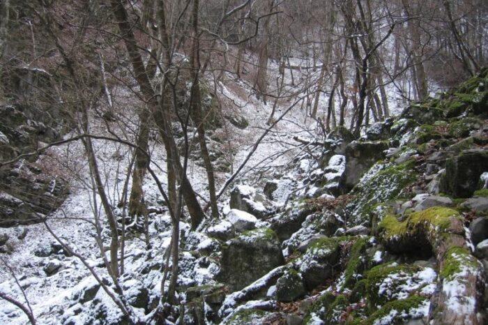 日本各地の冬の風景