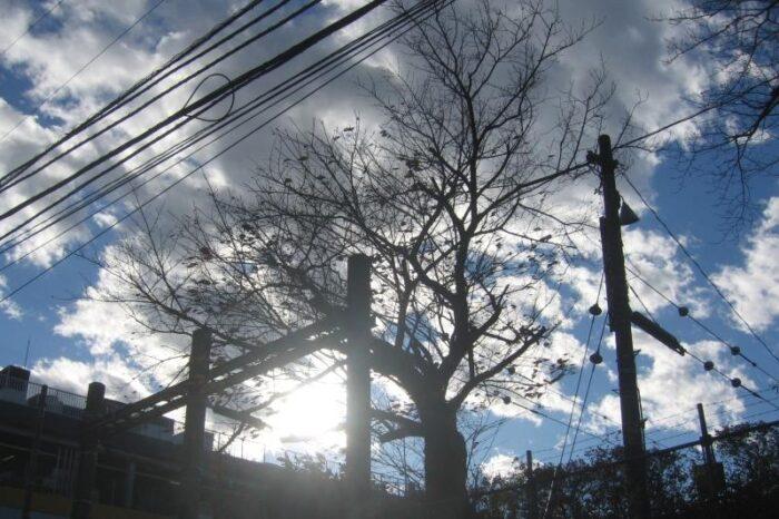 日本各地の冬の風景 東京