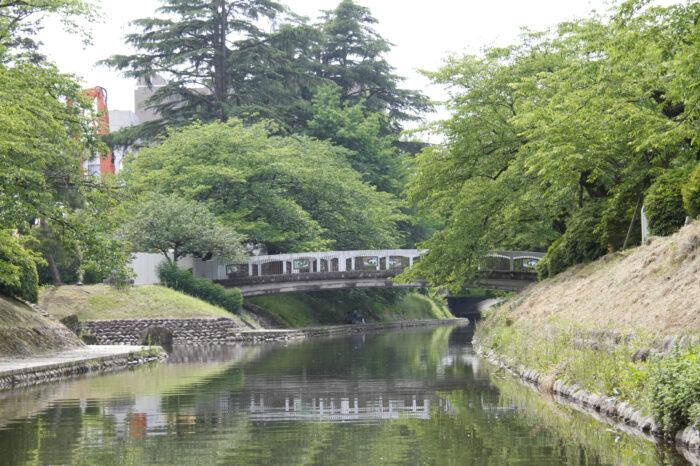 富山観光遊覧船