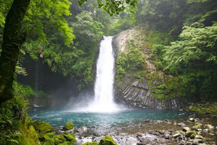 文豪ゆかりの絶景シリーズ 伊豆・天城の名瀑「浄蓮の滝」へ