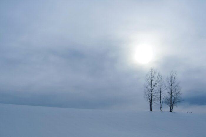 冬の北海道 三月の美瑛の風景