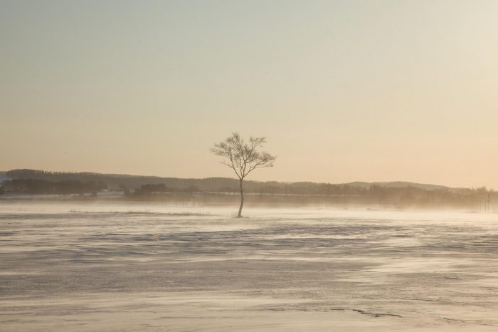 冬の北海道  二月の帯広の風景