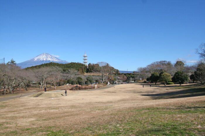 岩本山公園と富士山