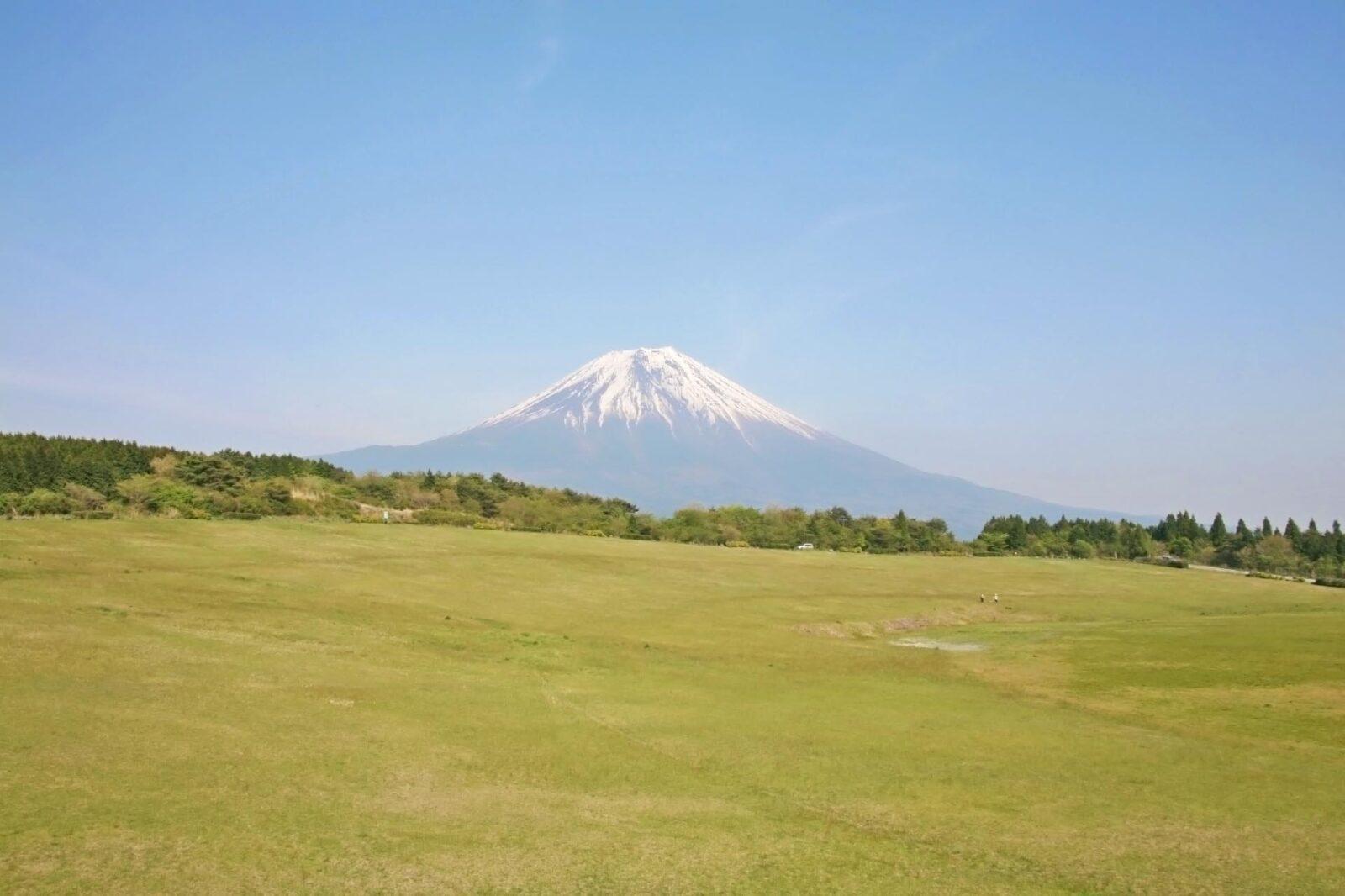 初夏の富士山 朝霧高原